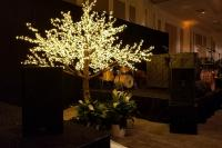 Wedding tree rental Las Vegas