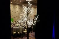 Lighted Tree Rental Las Vegas