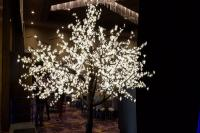 Large LED Tree Rental