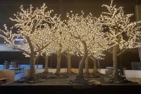 LED Cherry Blossom Tree Rental Las Vegas