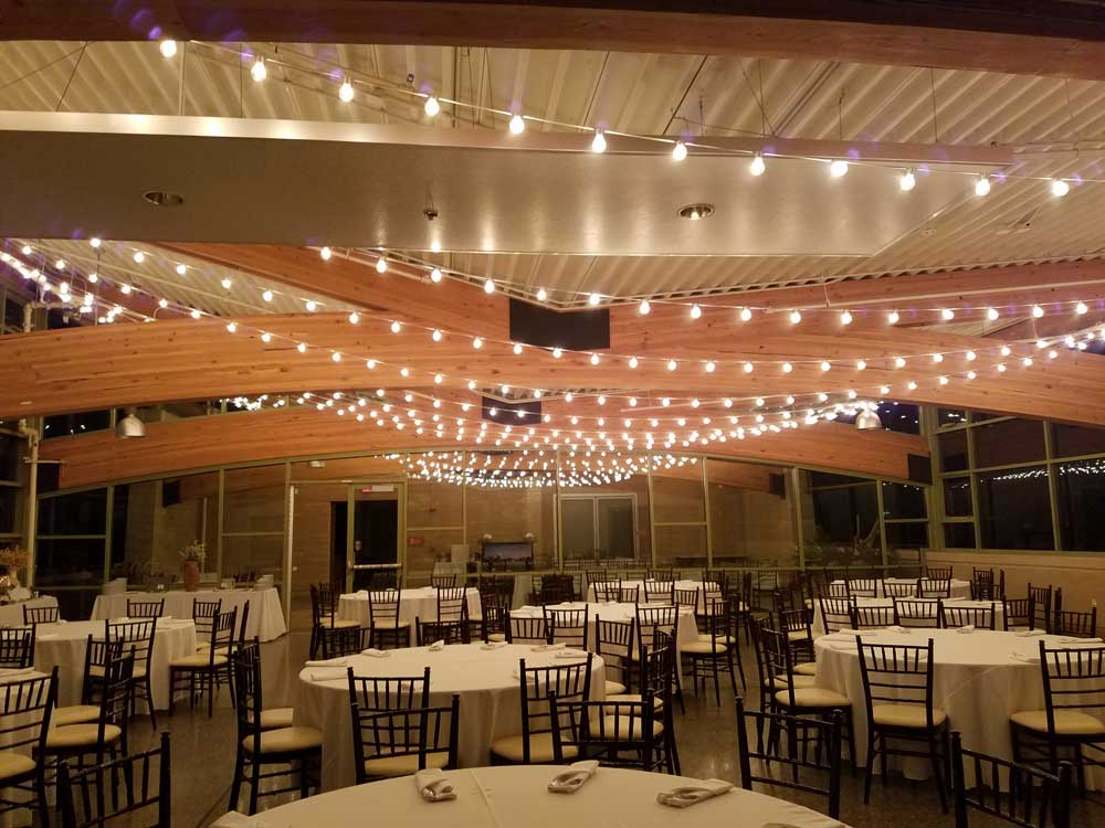 Wedding Lighting Springs Preserve